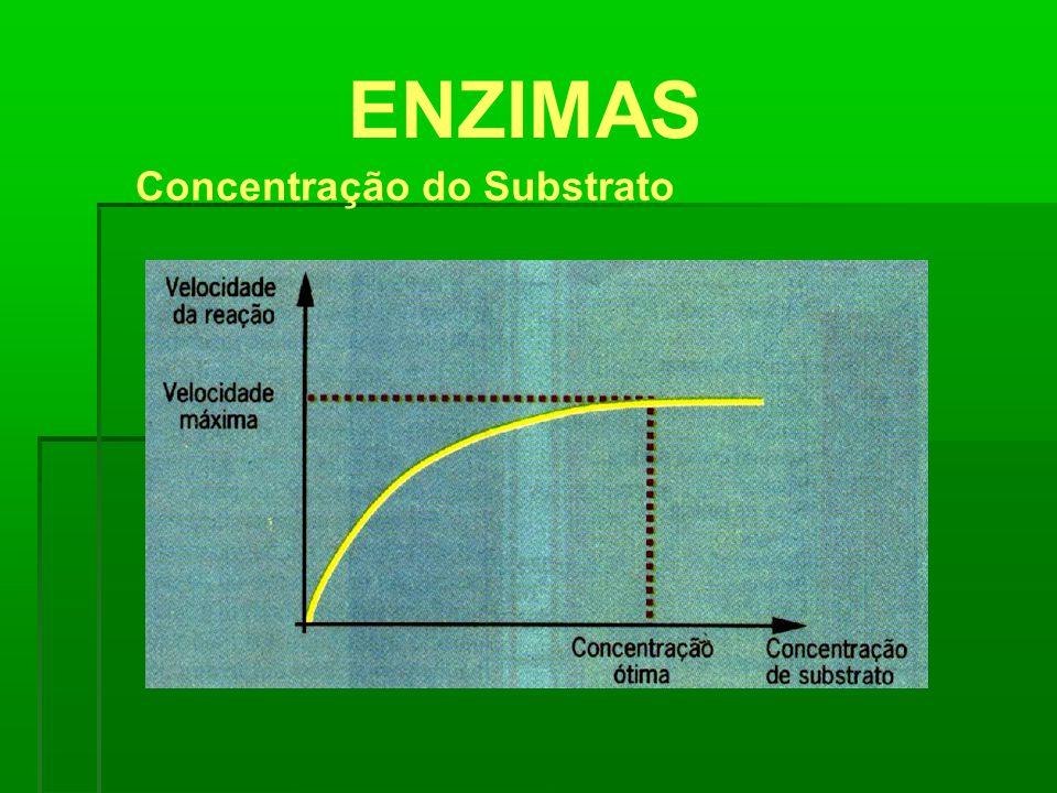 ENZIMAS Concentração do Substrato