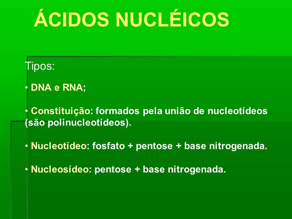 ÁCIDOS NUCLÉICOS Tipos: DNA e RNA; Constituição: formados pela união de nucleotídeos (são polinucleotídeos). Nucleotídeo: fosfato + pentose + base nit