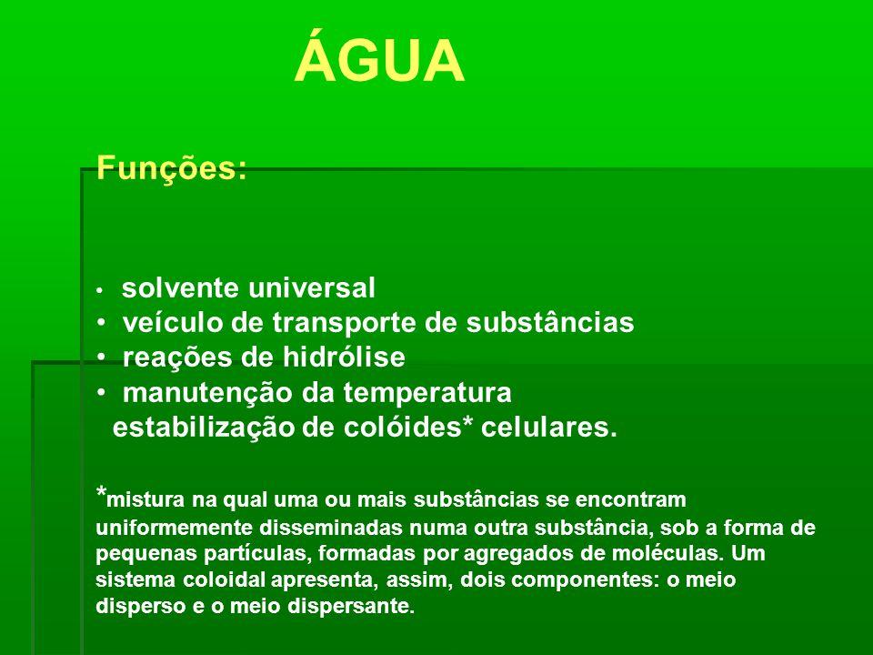 Funções: solvente universal veículo de transporte de substâncias reações de hidrólise manutenção da temperatura estabilização de colóides* celulares.