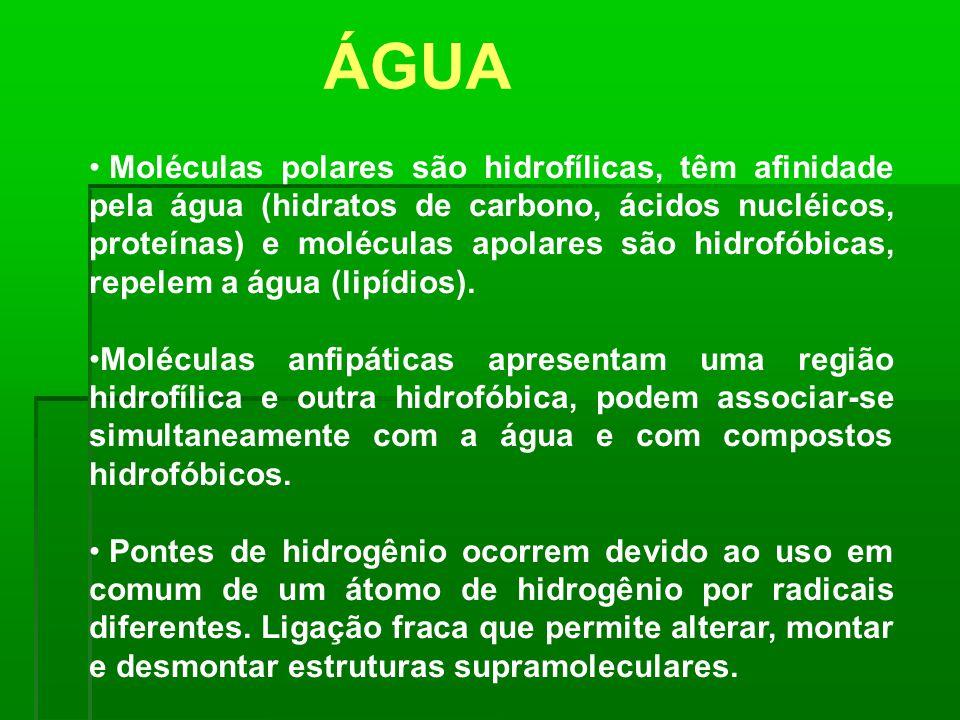 Moléculas polares são hidrofílicas, têm afinidade pela água (hidratos de carbono, ácidos nucléicos, proteínas) e moléculas apolares são hidrofóbicas,