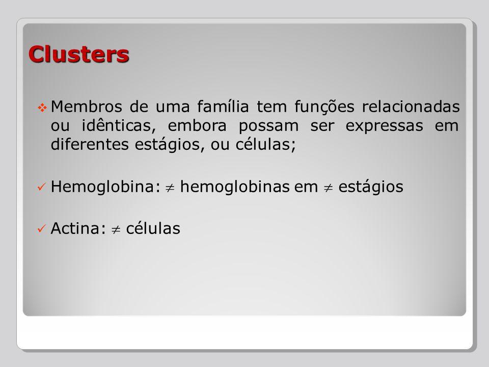 Membros de uma família tem funções relacionadas ou idênticas, embora possam ser expressas em diferentes estágios, ou células; Hemoglobina: hemoglobina