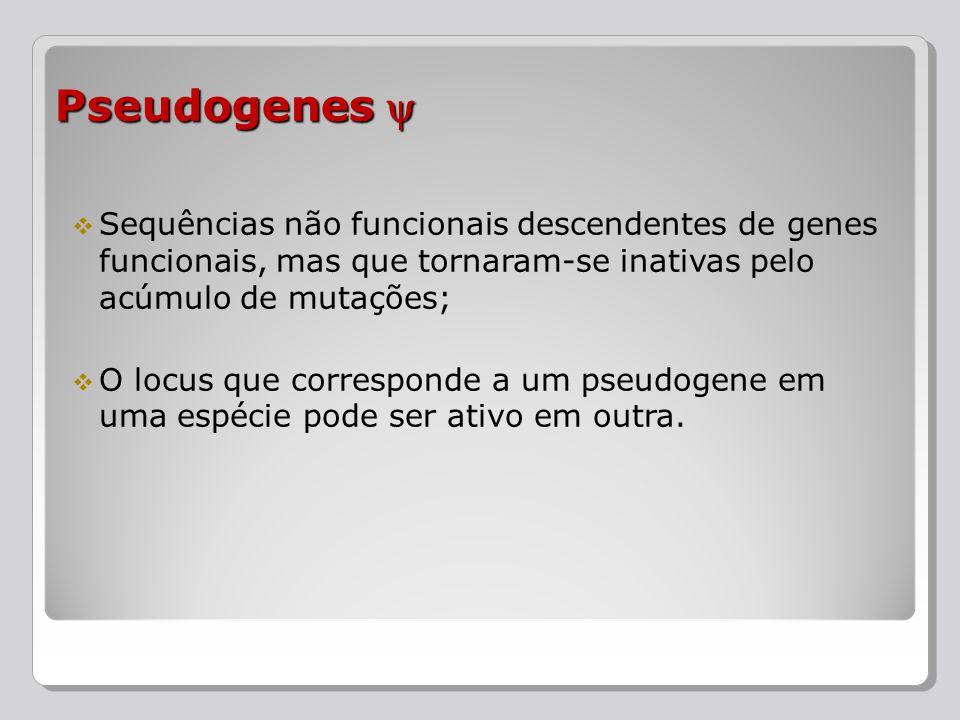 Sequências não funcionais descendentes de genes funcionais, mas que tornaram-se inativas pelo acúmulo de mutações; O locus que corresponde a um pseudo
