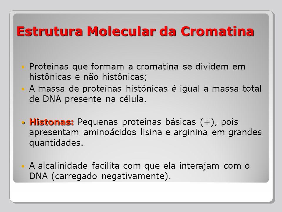 Proteínas que formam a cromatina se dividem em histônicas e não histônicas; A massa de proteínas histônicas é igual a massa total de DNA presente na c