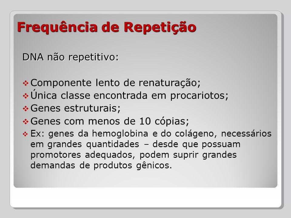 DNA repetitivo: Componente rápido de renaturação; Famílias de sequências bastante relacionadas; Membros de uma família são sequências curtas e similares – as diferenças ocorrem por inserções, substituições e deleções, já que a repetitividade facilita o crossing-over; Em humanos, 30% do genoma é sequência repetitiva pelo menos 20 vezes; Frequência de Repetição
