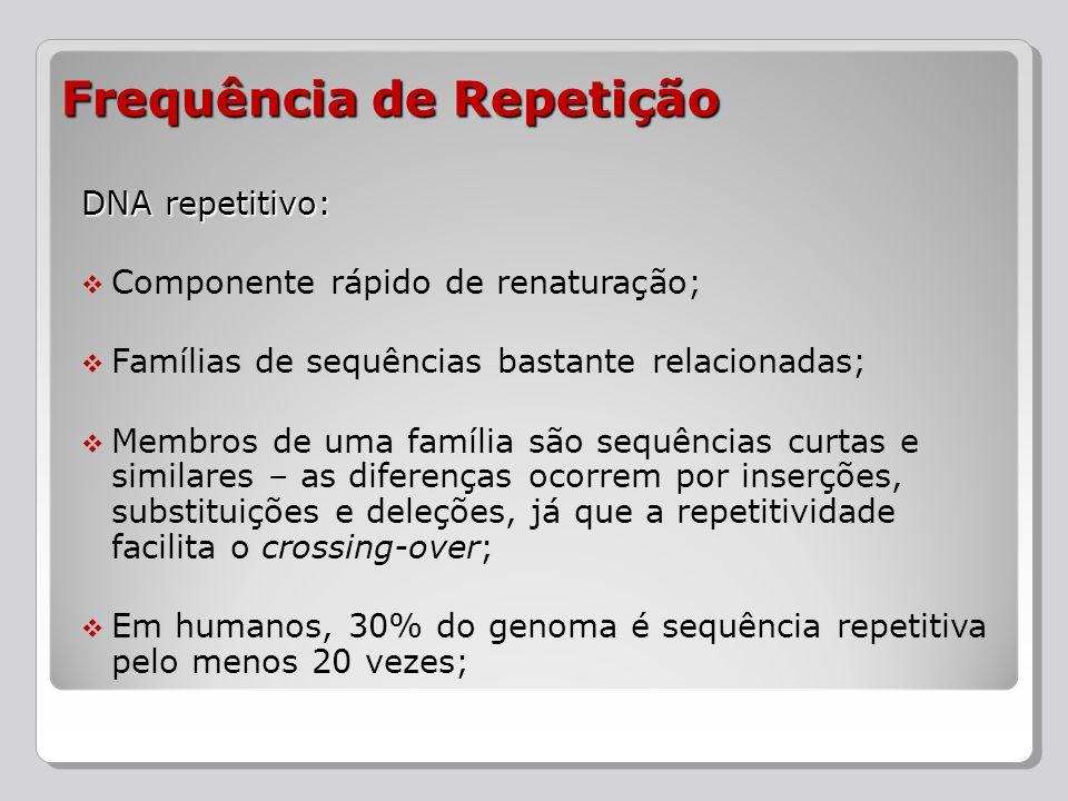 DNA repetitivo: Componente rápido de renaturação; Famílias de sequências bastante relacionadas; Membros de uma família são sequências curtas e similar
