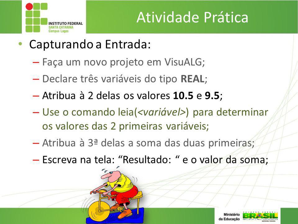 Atividade Prática Capturando a Entrada: – Faça um novo projeto em VisuALG; – Declare três variáveis do tipo REAL; – Atribua à 2 delas os valores 10.5