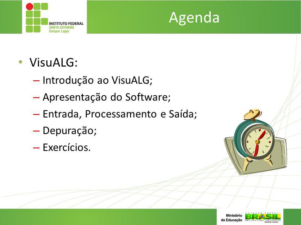 Agenda VisuALG: – Introdução ao VisuALG; – Apresentação do Software; – Entrada, Processamento e Saída; – Depuração; – Exercícios.