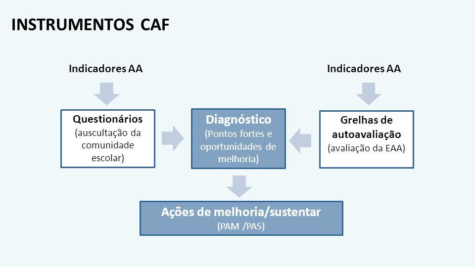 INSTRUMENTOS CAF Questionários (auscultação da comunidade escolar) Grelhas de autoavaliação (avaliação da EAA) Indicadores AA Diagnóstico (Pontos fort
