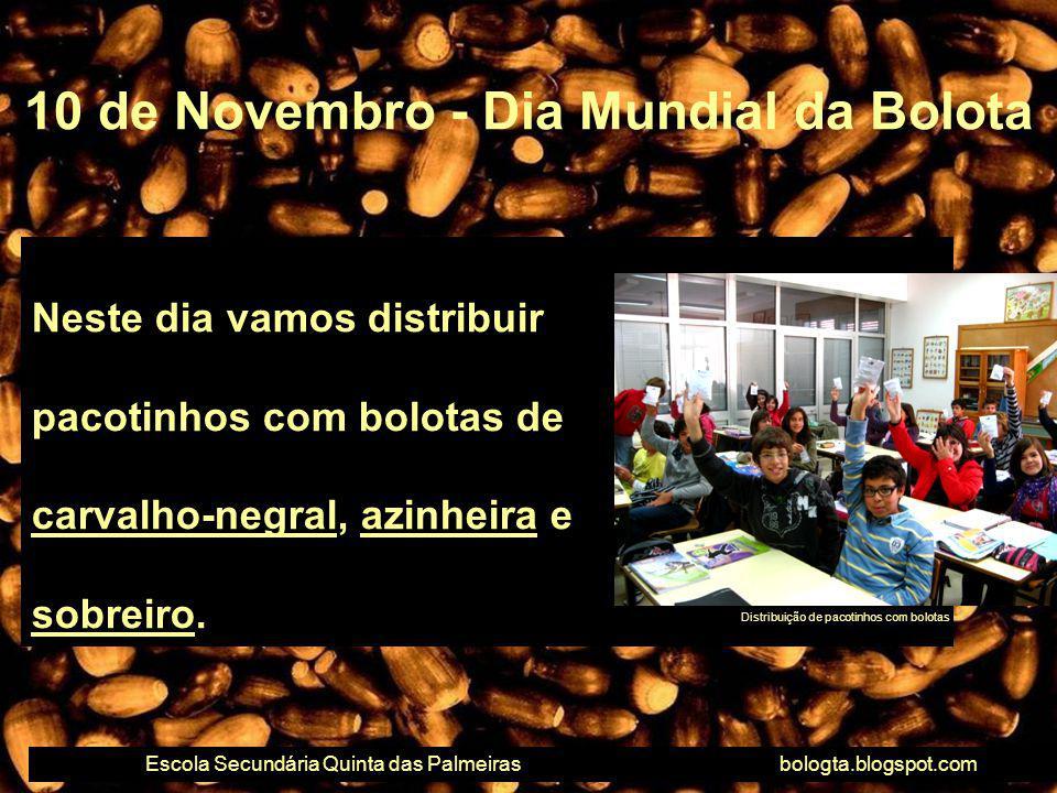 Neste dia vamos distribuir pacotinhos com bolotas de carvalho-negral, azinheira e sobreiro. 10 de Novembro - Dia Mundial da Bolota Escola Secundária Q