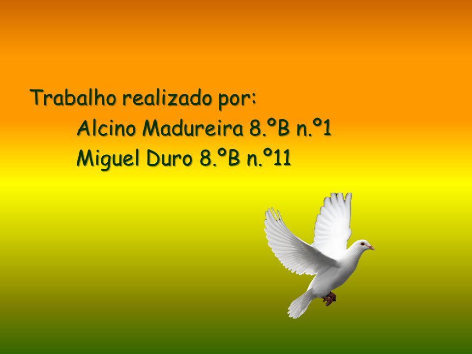 Trabalho realizado por: Alcino Madureira 8.ºB n.º1 Miguel Duro 8.ºB n.º11