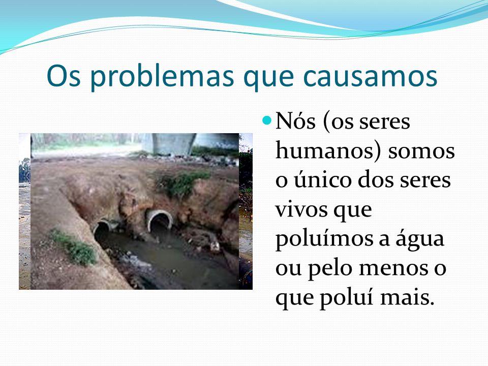 Os problemas que causamos Nós (os seres humanos) somos o único dos seres vivos que poluímos a água ou pelo menos o que poluí mais.