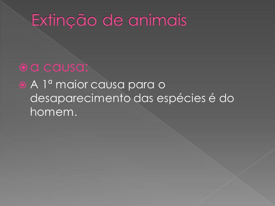 a causa: A 1ª maior causa para o desaparecimento das espécies é do homem.