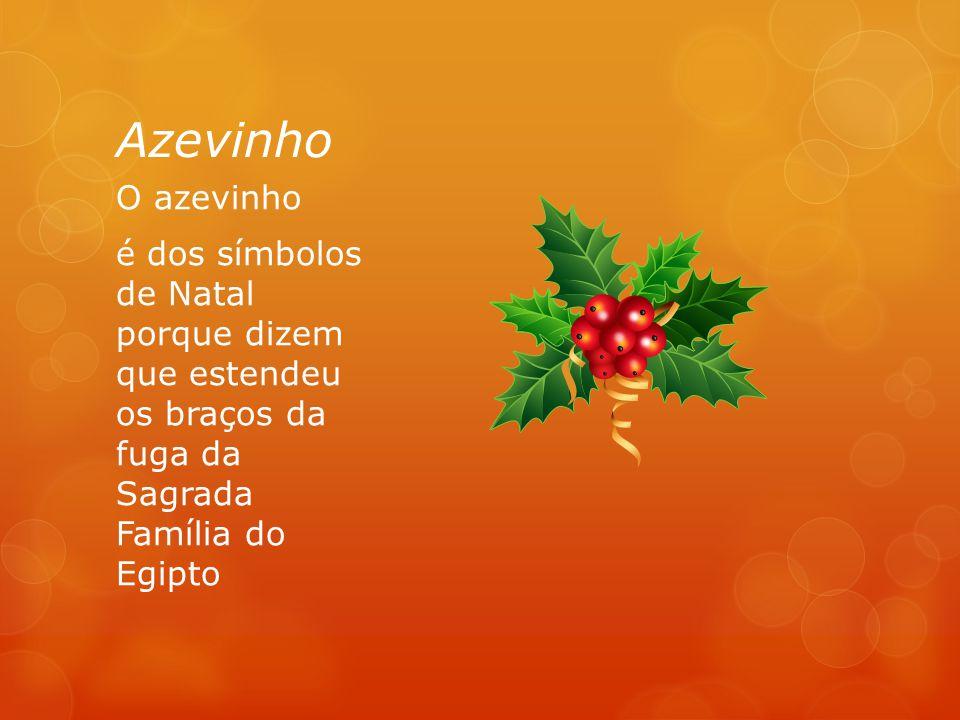 Azevinho O azevinho é dos símbolos de Natal porque dizem que estendeu os braços da fuga da Sagrada Família do Egipto