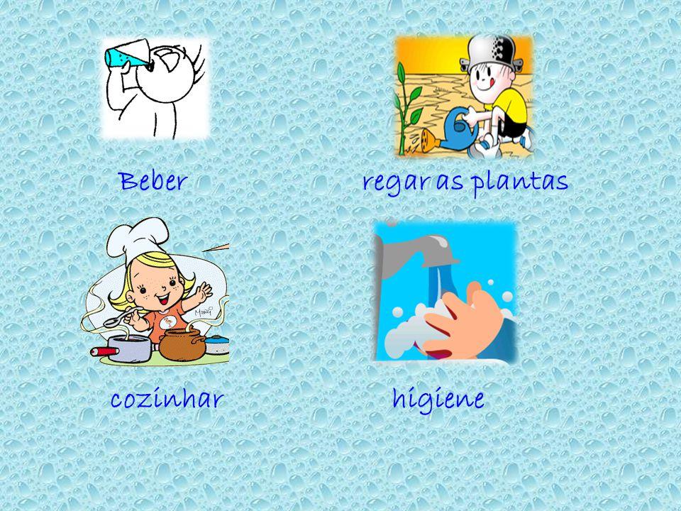 Beber regar as plantas cozinhar higiene
