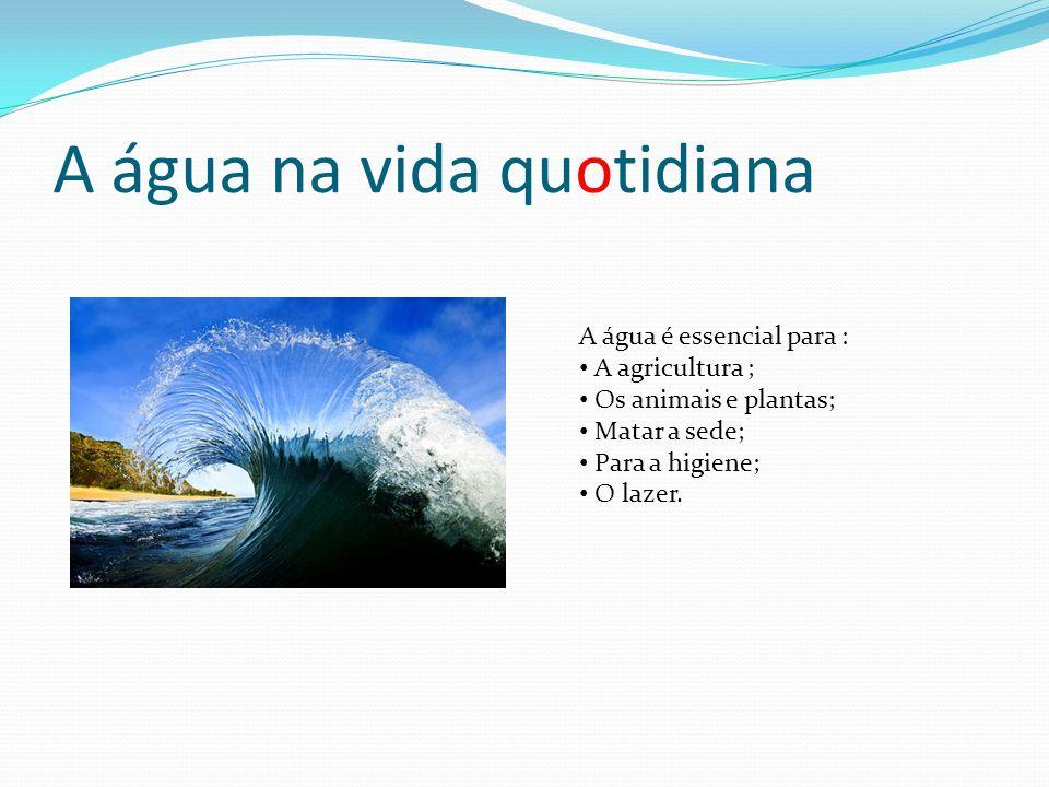 A água na vida quotidiana A água é essencial para : A agricultura ; Os animais e plantas; Matar a sede; Para a higiene; O lazer.