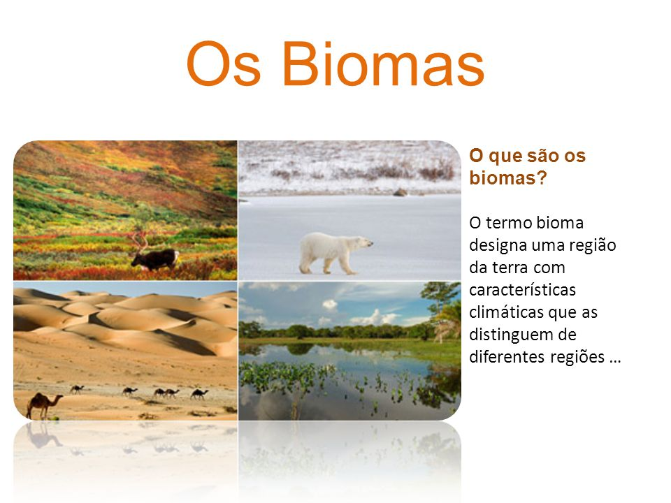 Os Biomas O que são os biomas? O termo bioma designa uma região da terra com características climáticas que as distinguem de diferentes regiões …