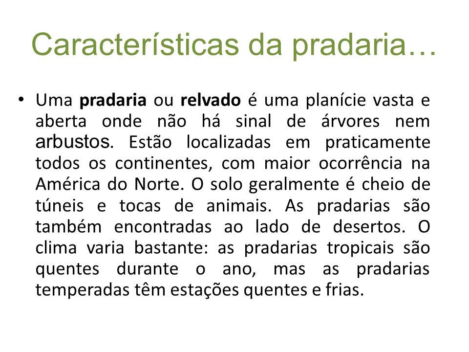 Características da pradaria… Uma pradaria ou relvado é uma planície vasta e aberta onde não há sinal de árvores nem arbustos. Estão localizadas em pra