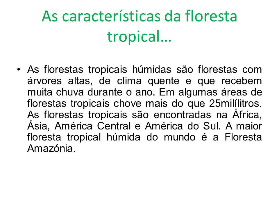 As características da floresta tropical… As florestas tropicais húmidas são florestas com árvores altas, de clima quente e que recebem muita chuva dur