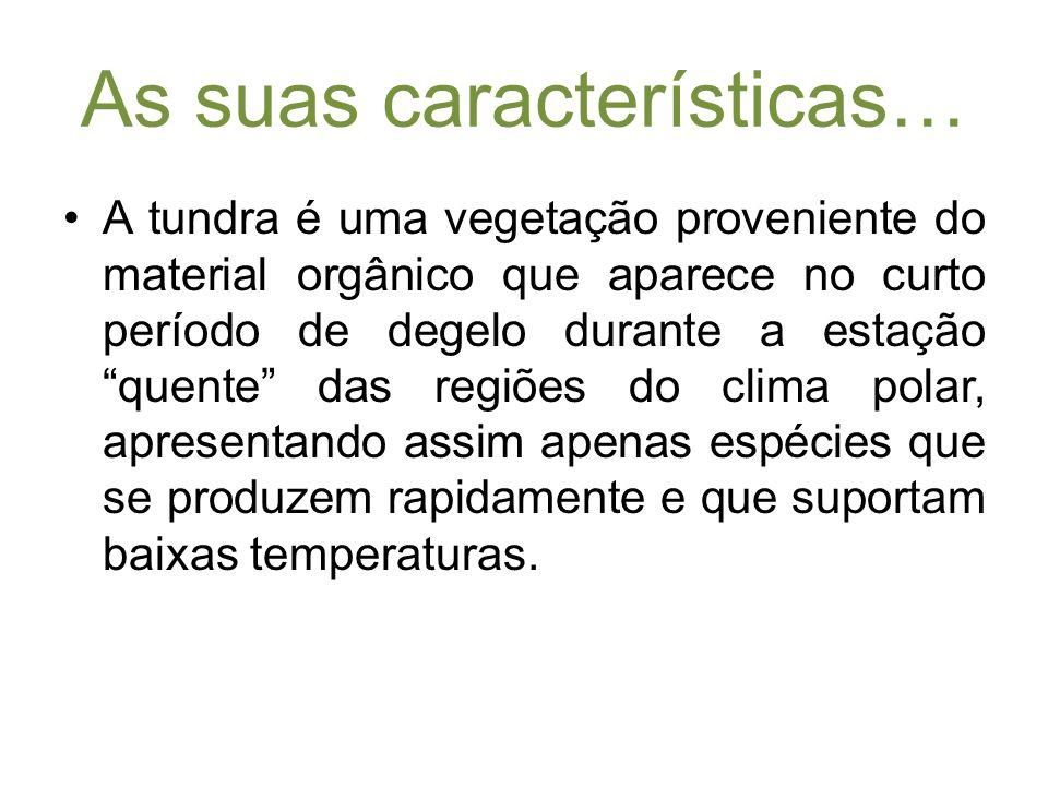 Características da pradaria… Uma pradaria ou relvado é uma planície vasta e aberta onde não há sinal de árvores nem arbustos.
