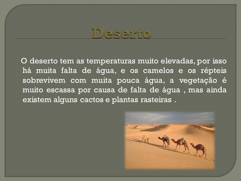O deserto tem as temperaturas muito elevadas, por isso há muita falta de água, e os camelos e os répteis sobrevivem com muita pouca água, a vegetação
