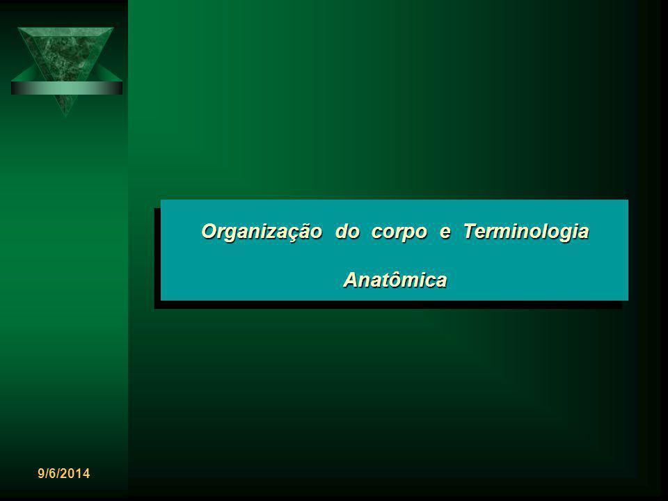 9/6/2014 Organização do corpo e Terminologia Anatômica MORFOLOGIA é a ciência que trata da forma, da arquitetura e da estrutura dos seres vivos e não-vivos.