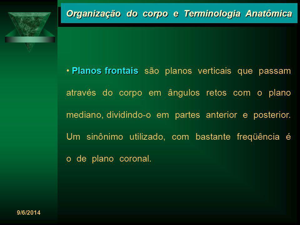 9/6/2014 Organização do corpo e Terminologia Anatômica Planos frontais Planos frontais são planos verticais que passam através do corpo em ângulos ret