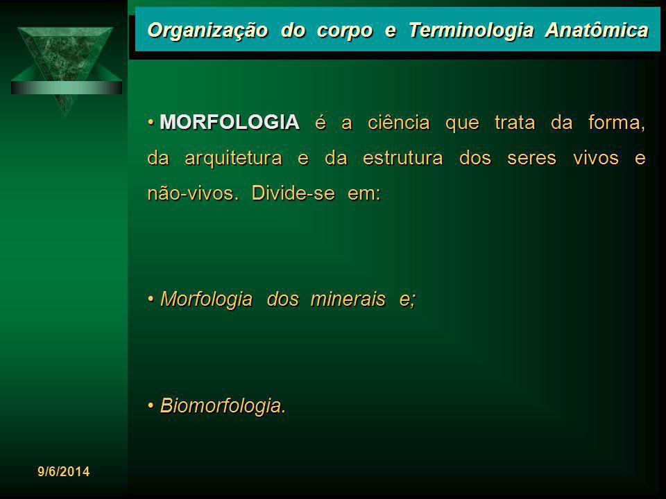 9/6/2014 Organização do corpo e Terminologia Anatômica BIOMORFOLOGIA é o ramo da Morfologia que se preocupa com a estrutura dos seres vivos.