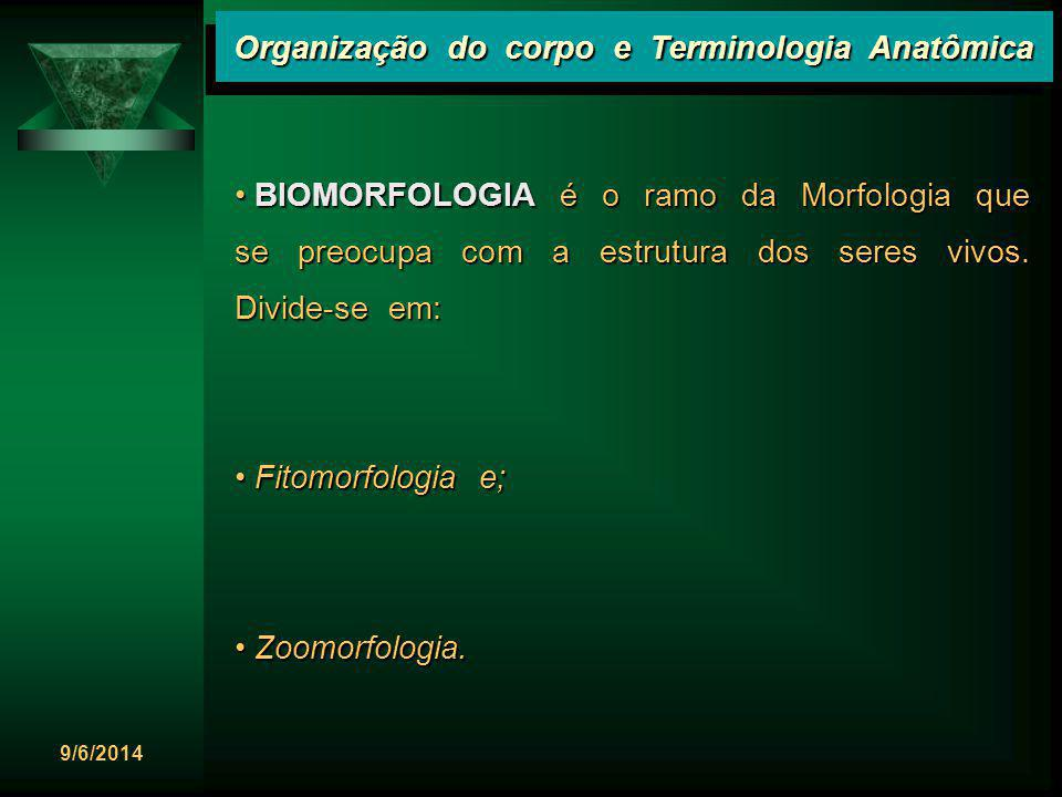9/6/2014 Organização do corpo e Terminologia Anatômica E dentro da Zoomorfologia, temos: E dentro da Zoomorfologia, temos: Anatomia Veterinária e; Anatomia Veterinária e; Anatomia Humana ou Antropotomia.