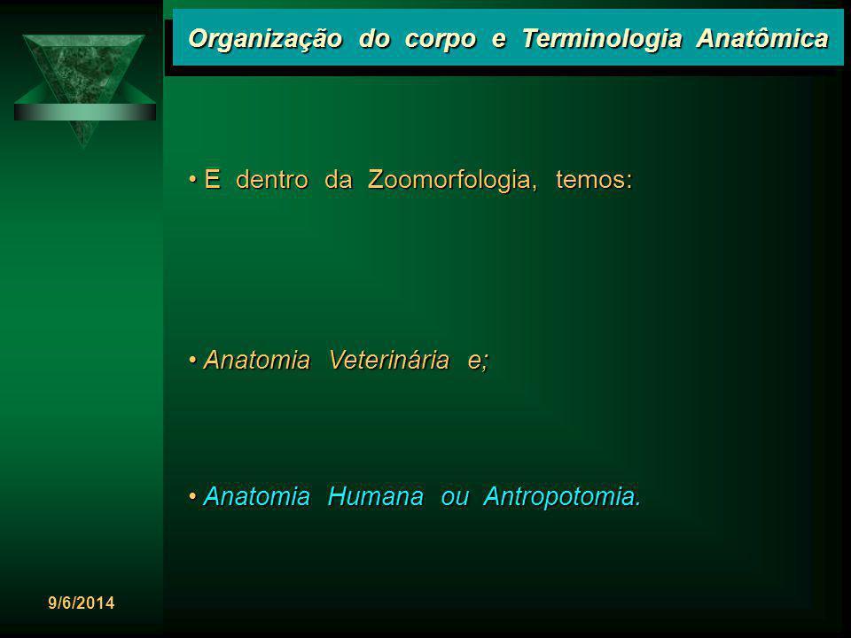 9/6/2014 Organização do corpo e Terminologia Anatômica E dentro da Zoomorfologia, temos: E dentro da Zoomorfologia, temos: Anatomia Veterinária e; Ana