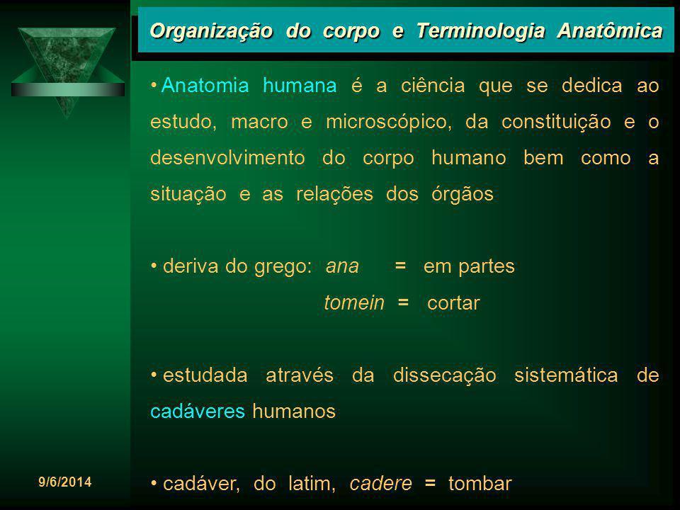 9/6/2014 Organização do corpo e Terminologia Anatômica Plano sagital mediano Plano sagital mediano é o plano vertical que passa longitudinalmente através do corpo, dividindo-o em metades direita e esquerda, simétricas.