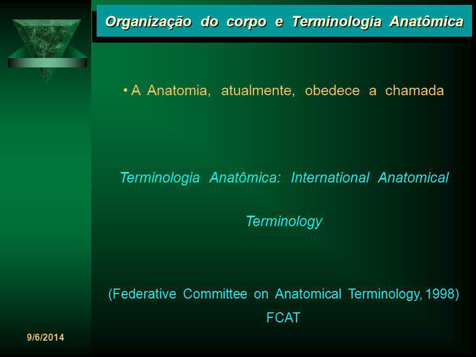 9/6/2014 Organização do corpo e Terminologia Anatômica Planos frontais Planos frontais são planos verticais que passam através do corpo em ângulos retos com o plano mediano, dividindo-o em partes anterior e posterior.