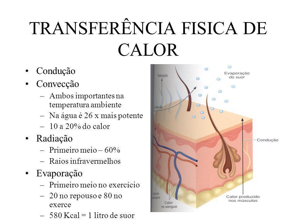 SÍNCOPE Fraqueza generalizada Hipotensão Prenúncios –Visão embotada –Temperatura central elevada –Menor coordenação dos movimentos –Lassidão Ocorre mais em sujeitos sem aclimatação