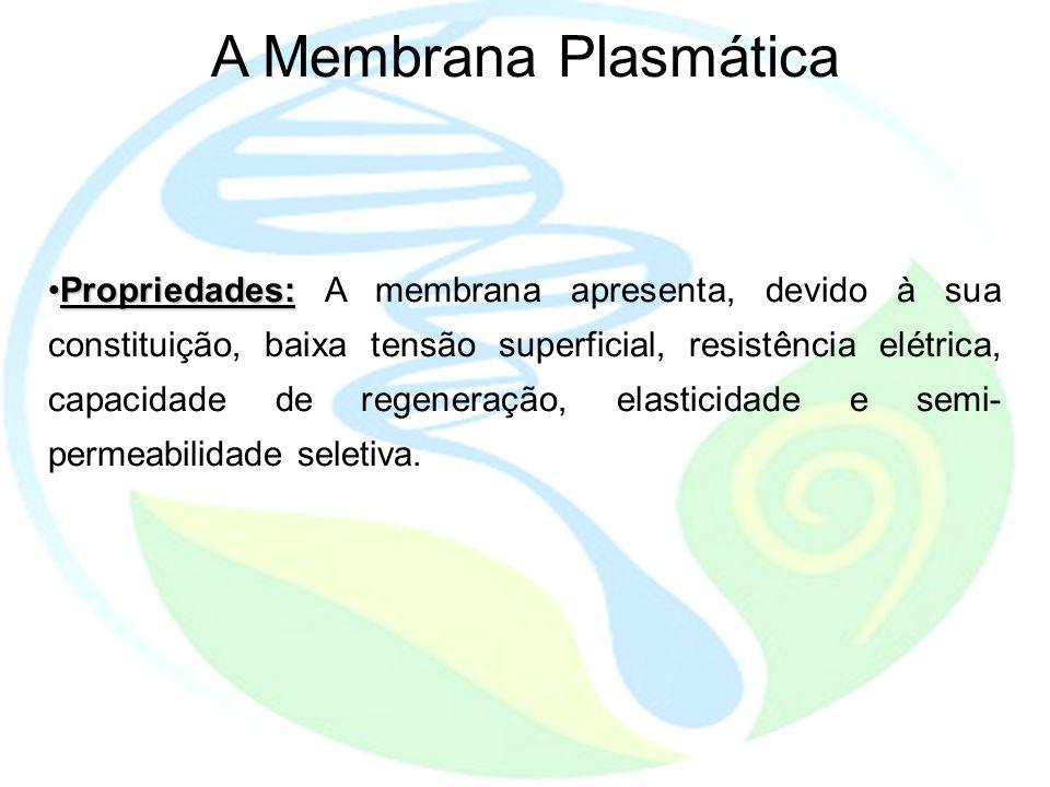 Propriedades:Propriedades: A membrana apresenta, devido à sua constituição, baixa tensão superficial, resistência elétrica, capacidade de regeneração, elasticidade e semi- permeabilidade seletiva.