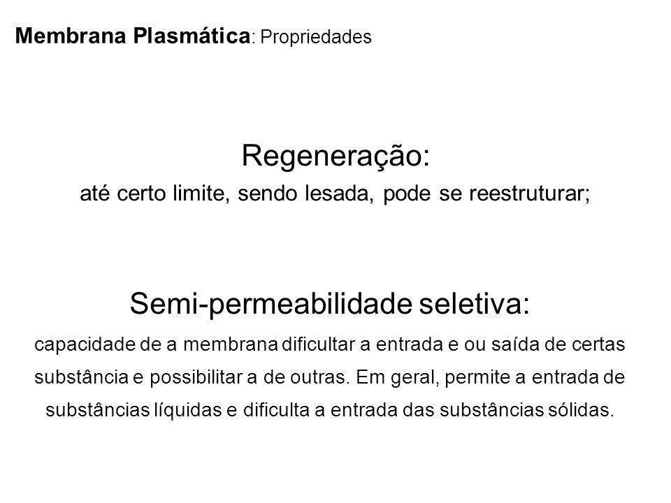 Membrana Plasmática : Propriedades Regeneração: até certo limite, sendo lesada, pode se reestruturar; Semi-permeabilidade seletiva: capacidade de a me
