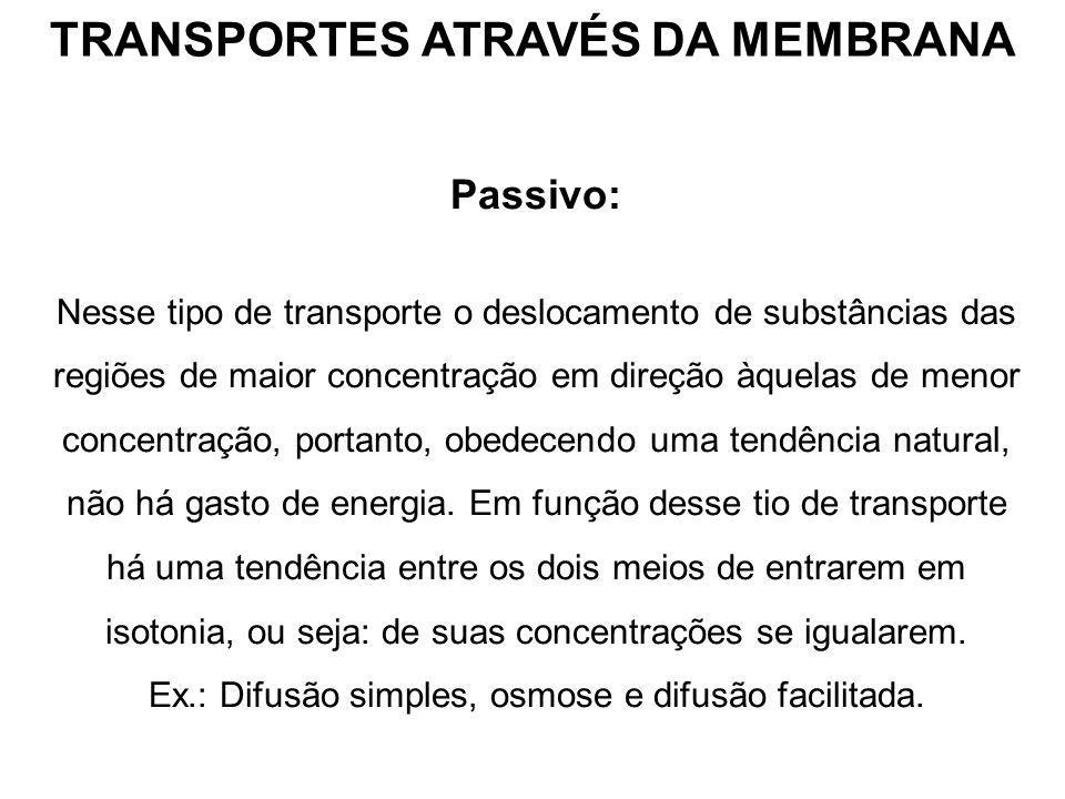 TRANSPORTES ATRAVÉS DA MEMBRANA Passivo: Nesse tipo de transporte o deslocamento de substâncias das regiões de maior concentração em direção àquelas d