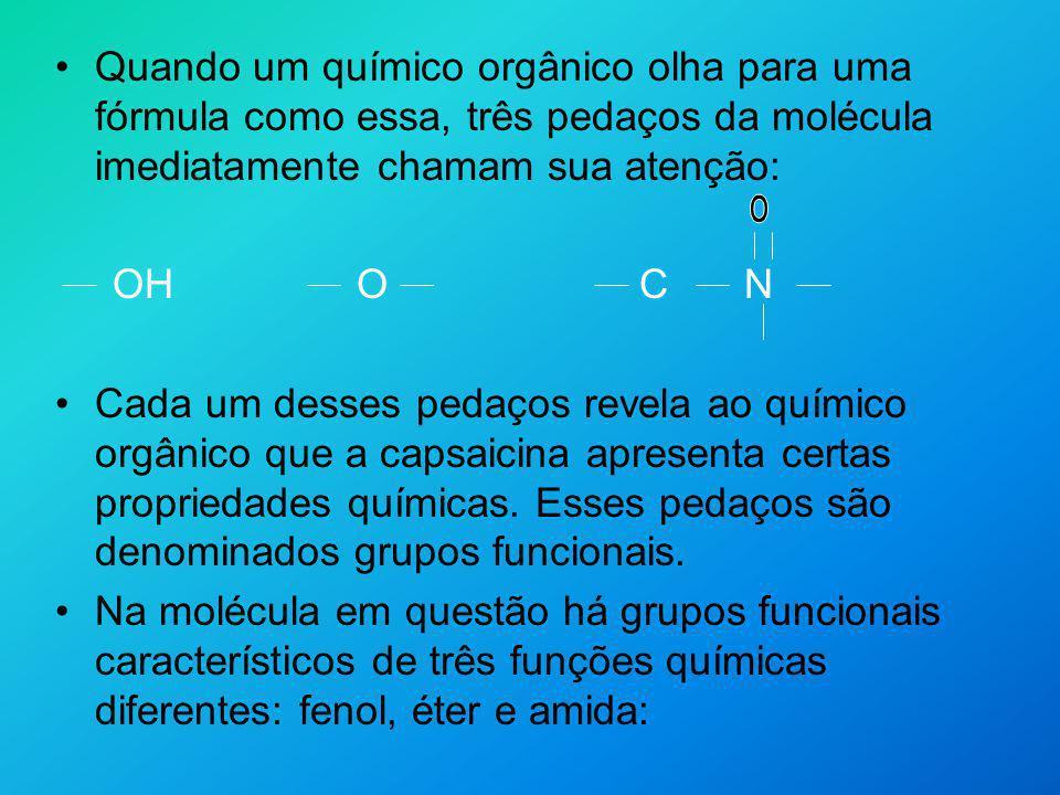 Quando um químico orgânico olha para uma fórmula como essa, três pedaços da molécula imediatamente chamam sua atenção: OH O C N Cada um desses pedaços
