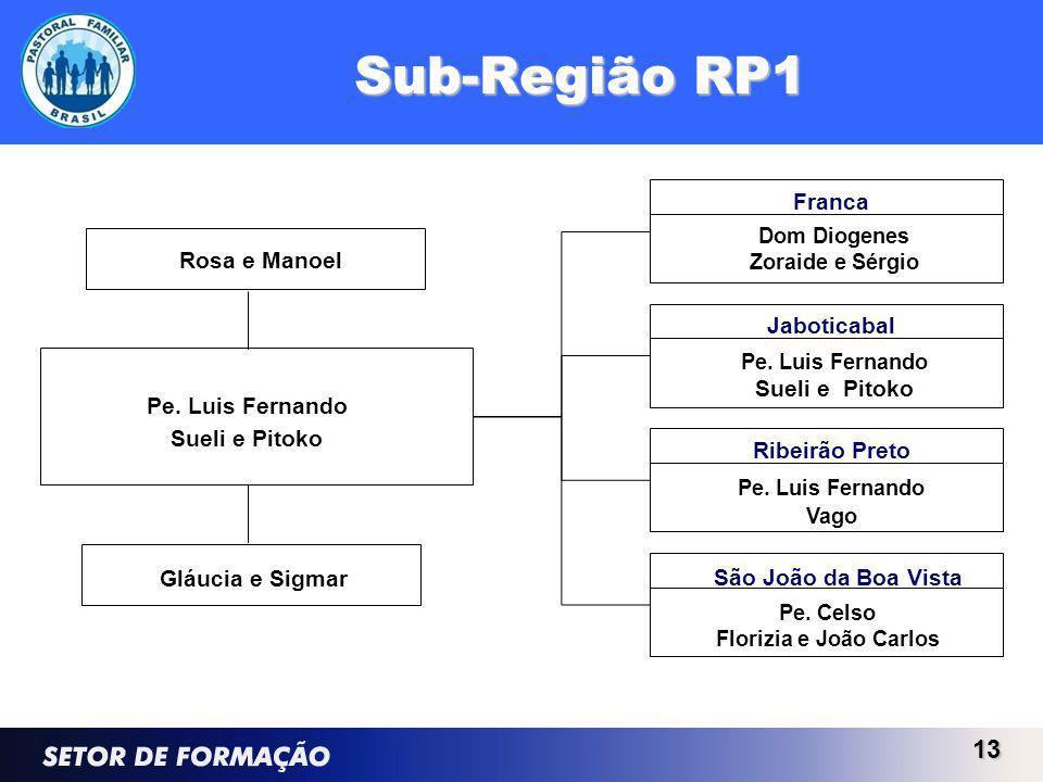 Sub-Região RP1 13 Jaboticabal Pe. Luis Fernando Sueli e Pitoko São João da Boa Vista Pe. Celso Florizia e João Carlos Ribeirão Preto Pe. Luis Fernando