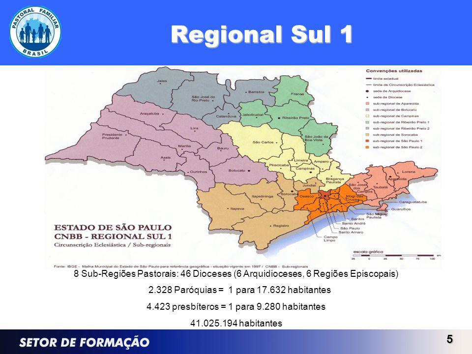 Regional Sul 1 5 8 Sub-Regiões Pastorais: 46 Dioceses (6 Arquidioceses, 6 Regiões Episcopais) 2.328 Paróquias = 1 para 17.632 habitantes 4.423 presbít