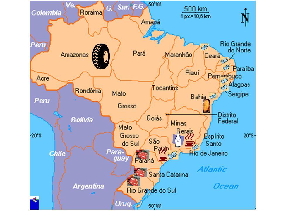 MADE IN BRAZIL Outros produtos exportados Borracha:Borracha: Amazônia. –Segundo produto mais exportado. –Prosperidade para os latifundiários, doenças