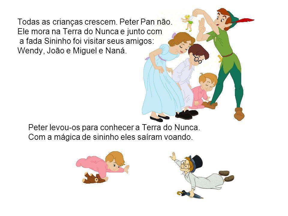 Todas as crianças crescem. Peter Pan não. Ele mora na Terra do Nunca e junto com a fada Sininho foi visitar seus amigos: Wendy, João e Miguel e Naná.