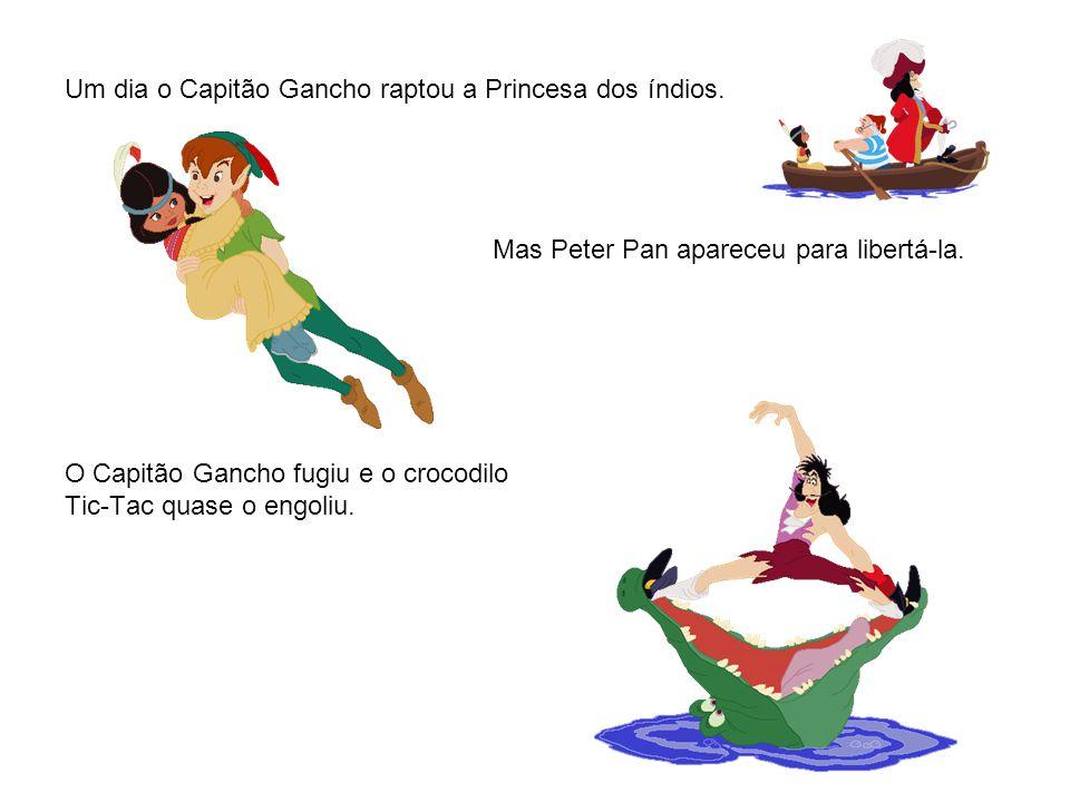 Um dia o Capitão Gancho raptou a Princesa dos índios. Mas Peter Pan apareceu para libertá-la. O Capitão Gancho fugiu e o crocodilo Tic-Tac quase o eng