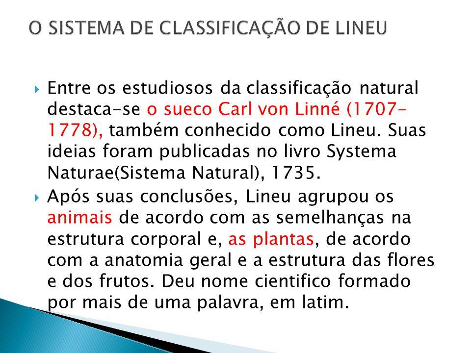 Entre os estudiosos da classificação natural destaca-se o sueco Carl von Linné (1707- 1778), também conhecido como Lineu. Suas ideias foram publicadas