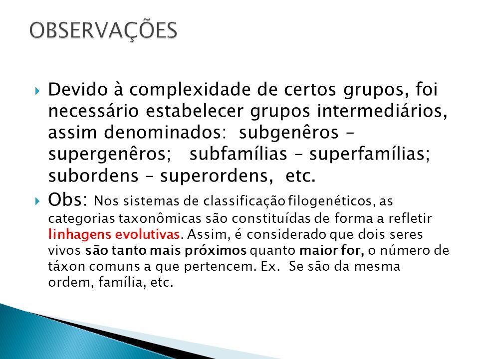 Devido à complexidade de certos grupos, foi necessário estabelecer grupos intermediários, assim denominados: subgenêros – supergenêros; subfamílias – superfamílias; subordens – superordens, etc.