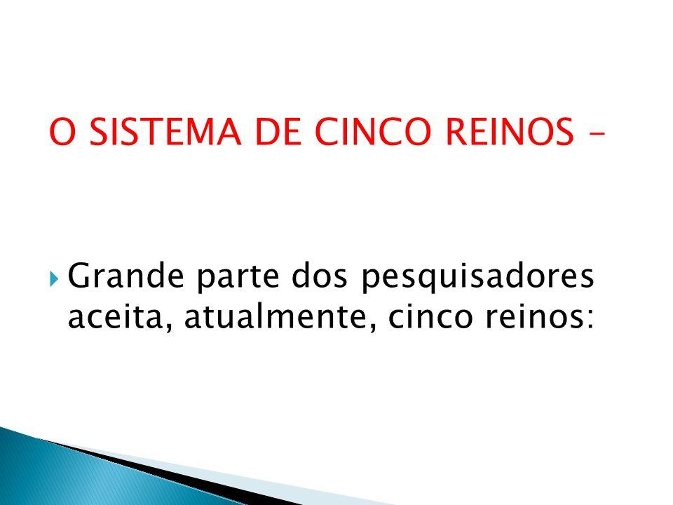 O SISTEMA DE CINCO REINOS – Grande parte dos pesquisadores aceita, atualmente, cinco reinos: