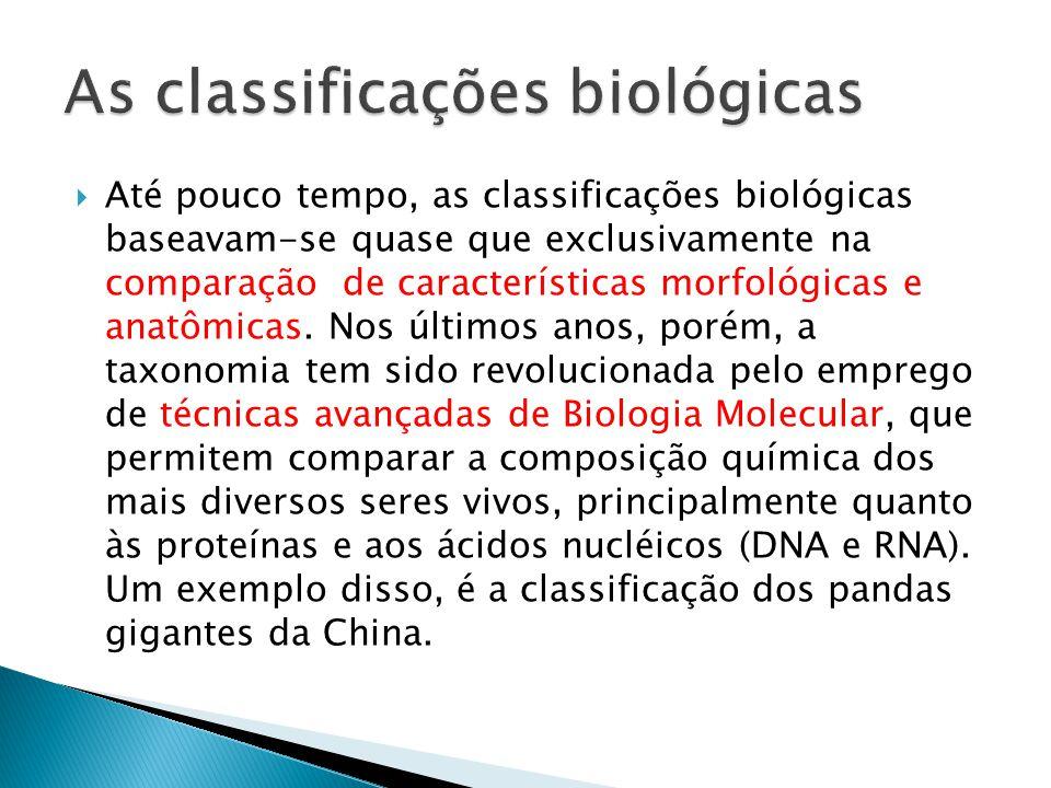 Até pouco tempo, as classificações biológicas baseavam-se quase que exclusivamente na comparação de características morfológicas e anatômicas. Nos últ