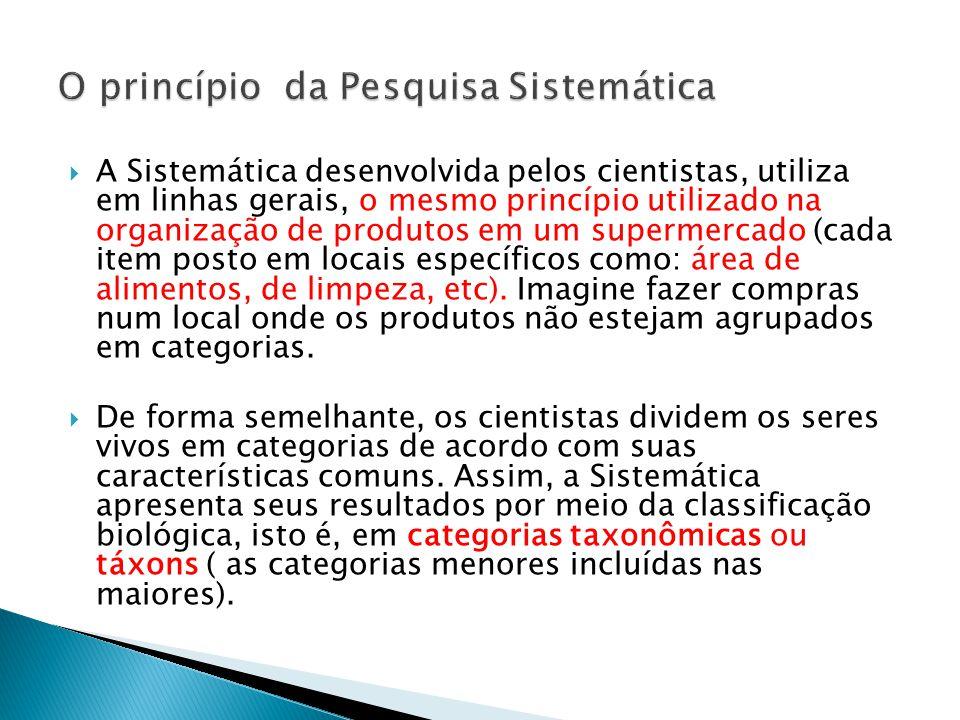 A Sistemática desenvolvida pelos cientistas, utiliza em linhas gerais, o mesmo princípio utilizado na organização de produtos em um supermercado (cada item posto em locais específicos como: área de alimentos, de limpeza, etc).