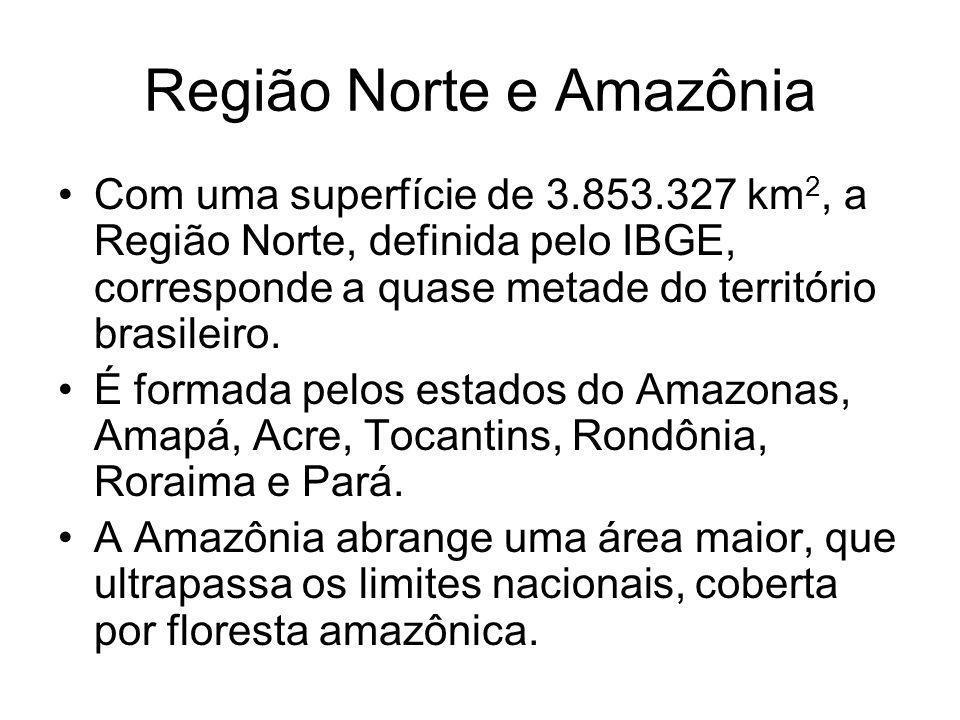 Região Norte e Amazônia Com uma superfície de 3.853.327 km 2, a Região Norte, definida pelo IBGE, corresponde a quase metade do território brasileiro.