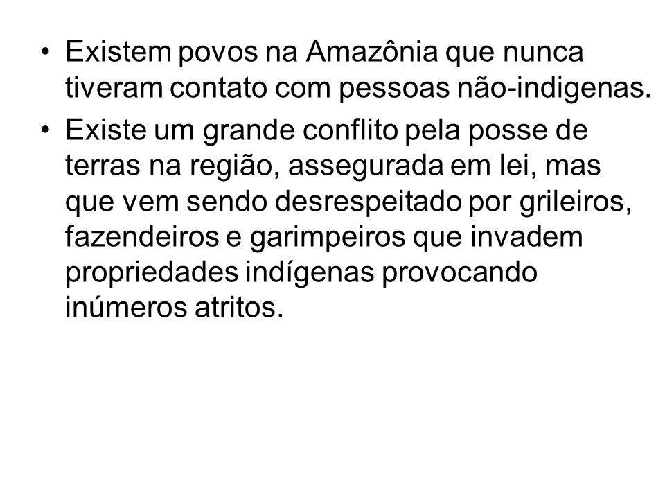 Existem povos na Amazônia que nunca tiveram contato com pessoas não-indigenas. Existe um grande conflito pela posse de terras na região, assegurada em
