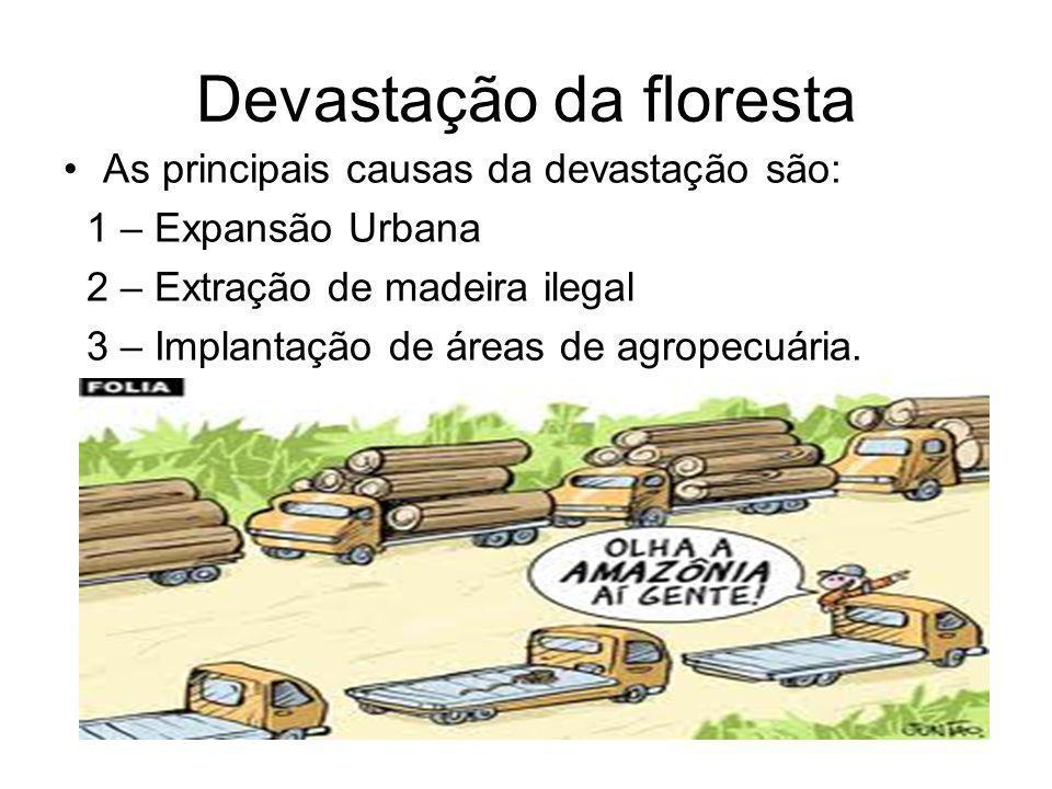Devastação da floresta As principais causas da devastação são: 1 – Expansão Urbana 2 – Extração de madeira ilegal 3 – Implantação de áreas de agropecuária.