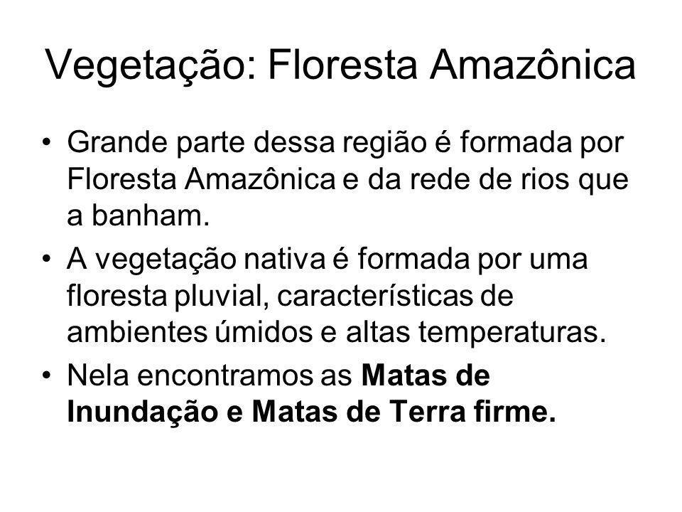 Vegetação: Floresta Amazônica Grande parte dessa região é formada por Floresta Amazônica e da rede de rios que a banham. A vegetação nativa é formada
